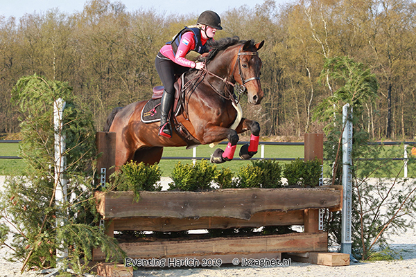 Eventing Derby Harich 2019